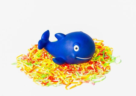Blue rubber whale on colorful elastic photo