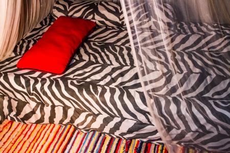 Décoration De Chambre De Style Africain Avec Imprimé Zèbre Et Tapis ...