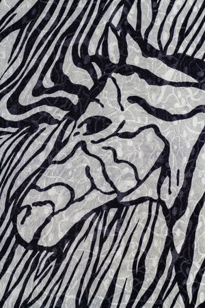 freaked: Close up of zebra print fabric background