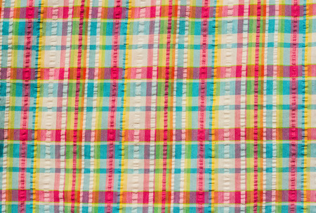 scot: Colorful scot pattern fabric background.