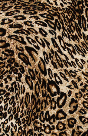 Tiger print fabric close  up background.