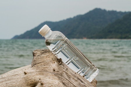 Drinking water bottle on dried wood   beside the sea. Stock Photo