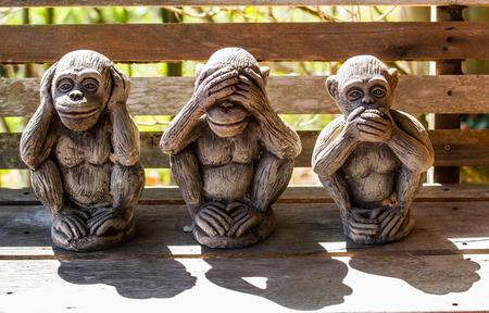 dharma: Three monkeys with Dharma puzzle.