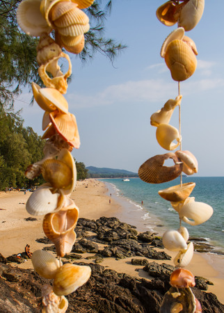 Beautiful beach with blind shells. Stock Photo