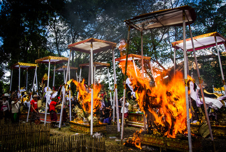 ubud: BALI, INDONESIA - AUGUST 20 : Public cremation ceremony. Sculpture of  bulls  get burnt on August 20,2016 at Ubud in Bali,Indonesia .This is Hindu ceremony.