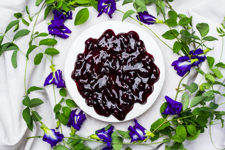 summer pudding: Homemade of blue berry cheese pie. Stock Photo