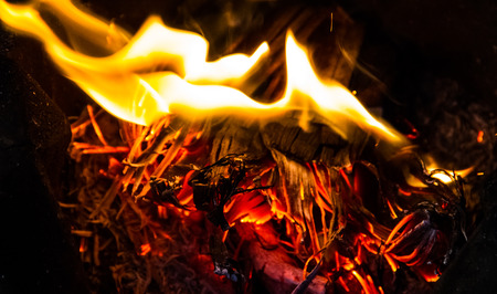 Burning wood. Campfire. Fire Background