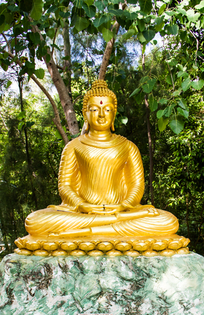 Golden buddha statue with green tree background. 免版税图像