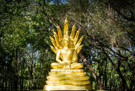 Golden Buddha statue  with 9 heads Naga snake. 版權商用圖片