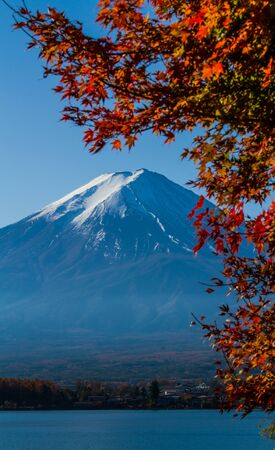 Mt.Fuji view from Kawaguchiko lake with autumn leaves foreground.