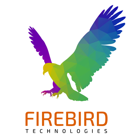 A modern multicolored flying eagle logo template