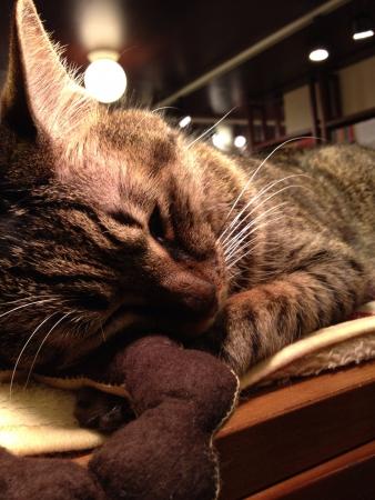 sleep well: sleep well my friend.