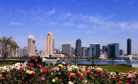 san   diego: San Diego skyline from Coronado Island gardens