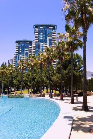 Beautiful high rise buildings with rows of palm trees and pool Stock Photo