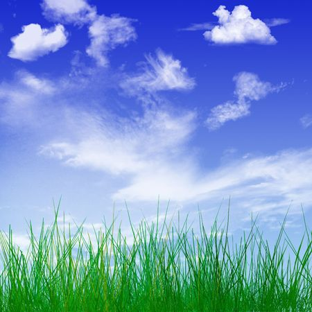 Close-up of young blades of grass with beautiful spring sky