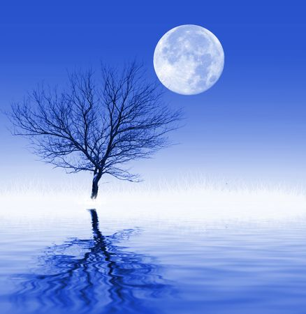Bare tree and frosted grass reflecting in water, with full moon above Stock Photo