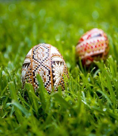 dewey: Traditionally decorated Romanian eggs, in dewey morning grass.  Shallow depth of field, plenty of copy space