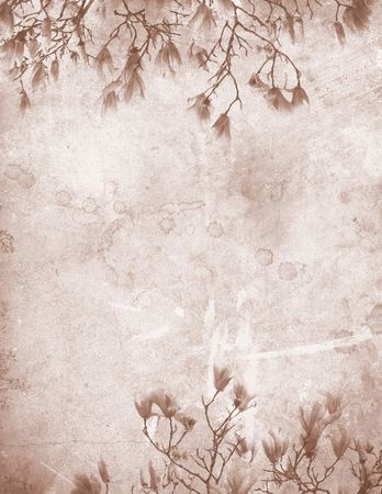 Vintage stained paper with delicate magnolia branches 免版税图像