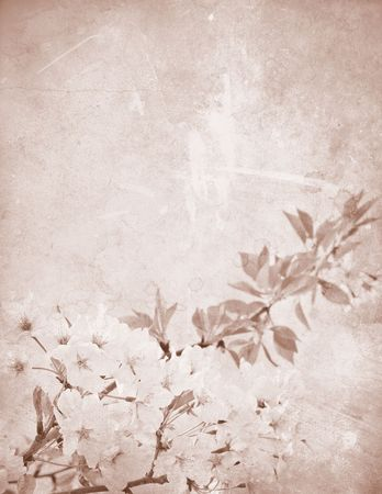 Vintage, stained paper with delicate cherry flowers