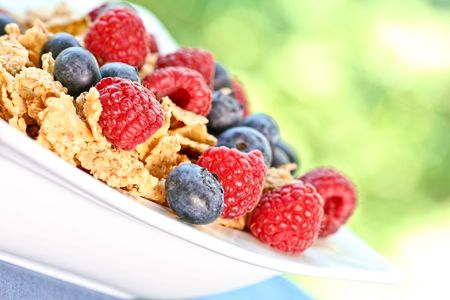 Bowl of berry cereal in an outdoor setting, with light filtering through the leaves.  Shallow depth of field.