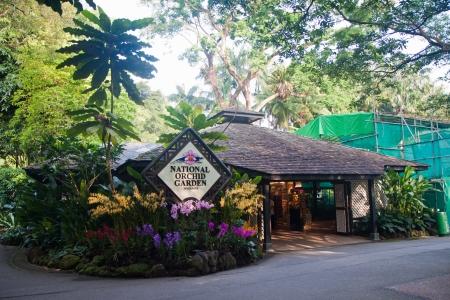 National Orchid Garden in Singapore Botanic Garden. Redactioneel