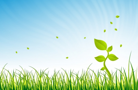 glorious: Illustration of a single green young plant in the open green field in a glorious day.