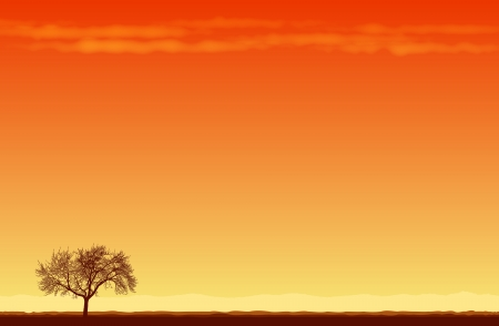 secluded:  illustration of a lone tree in the middle of desert. Illustration