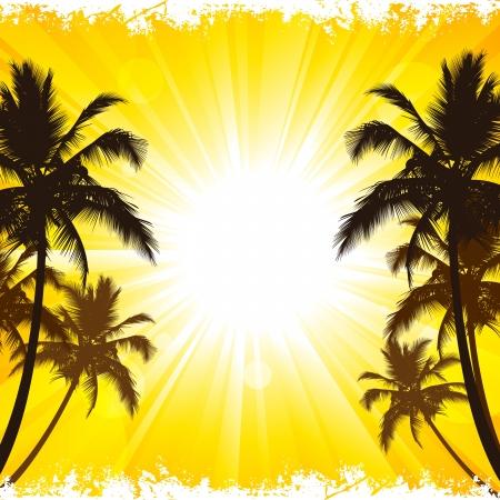 palmeras: fondo de vacaciones en la playa tropical.
