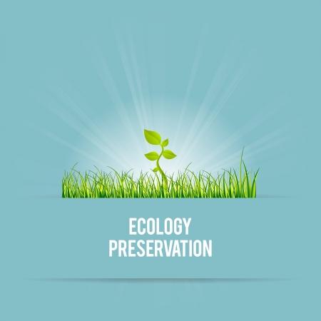 preservation: Vector illustration of green template of ecology preservation concept.