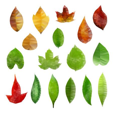 Vector illustration of low-polygonal leaves design elements.