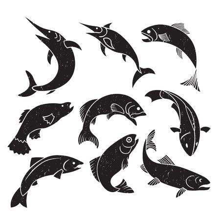 logo poisson: Vector illustration de l'étiquette de poisson timbre logo élément de design.