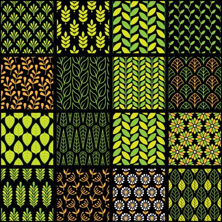 Vector illustration of nature floral patterns