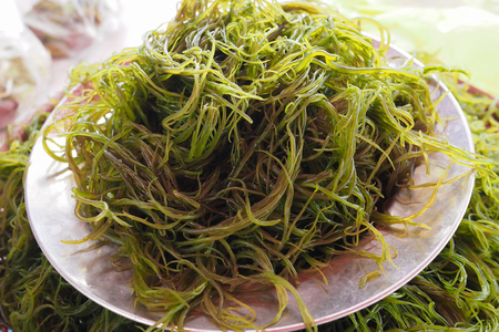 Fresh local seaweed (Gracilaria fisferi) in Thailand market Stok Fotoğraf