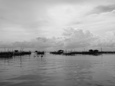 fisheries: Black and white tone of homestay and floating basket in lake at Kohyo, Songkhla, Thailand with beautiful sky and clouds. This is traditional fisheries area.