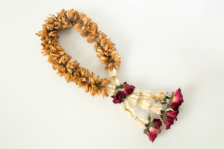 Fungus on brown dry garland with roses, crown flower and jasmine. Stock Photo