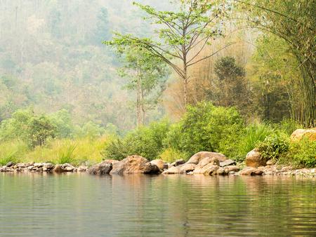 abundant: Abundant river forest with stones near the mountain slope. Stock Photo