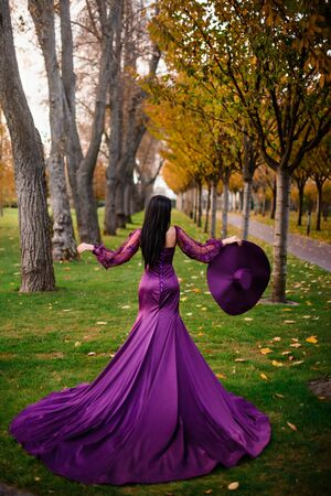 woman in luxurious dress stands in autumn park back to camera Banque d'images - 133678356