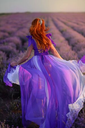A young red-haired woman in a dress runs along a flowering field of lavender at sunset. Back view.