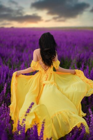 Summer mood. A woman in a luxurious yellow dress walks along a purple blooming field with her back to the camera. Imagens