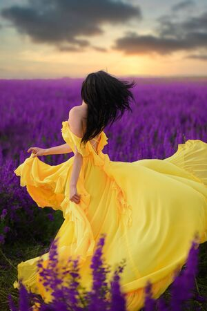 Summer mood. A woman in a luxurious yellow dress is standing in a purple flowering field with her back to the camera.