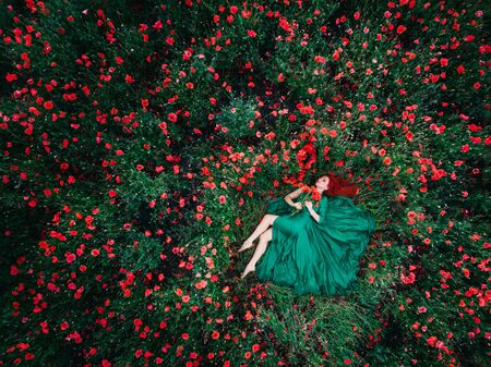 Happy red-haired woman in a luxurious dress lies in a field of flowering poppies, top view. A shot of a drone.