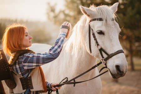 Young woman farmer combing a horse at the ranch. Close-up.