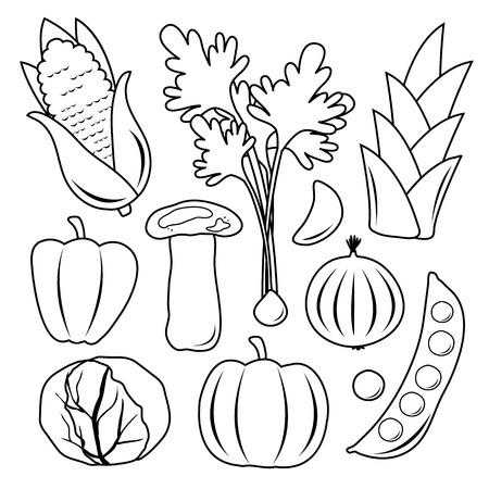 Vegetable Set Black Icon Collection Vector Vector