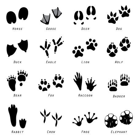 huellas de animales: Animal Spoor Huellas del vector del icono Vectores