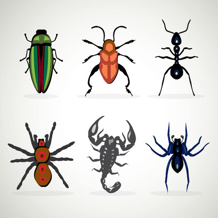 toxicity: Insects animal dangerous icons set cartoon illustration Illustration