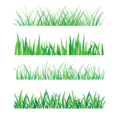 Backgrounds of Green Grass Isolated On White Vector Illustration