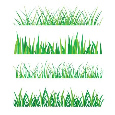 aislado: Fondos de la hierba verde aislado en blanco ilustración vectorial