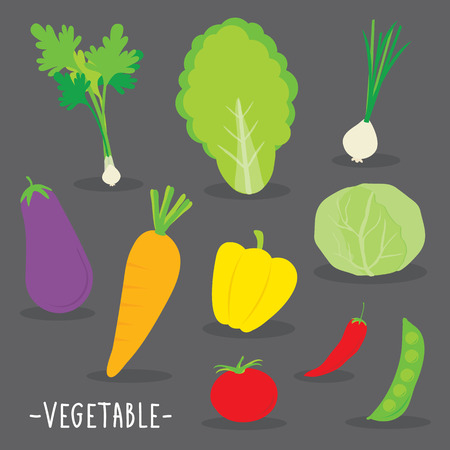 cabbage: Vegetable food cook tomato onion carrot chili cucumber parsley fresh cartoon vector Illustration