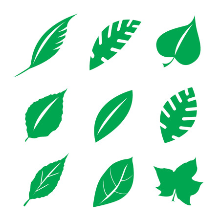 vegetate: Set of green leaves design elements.