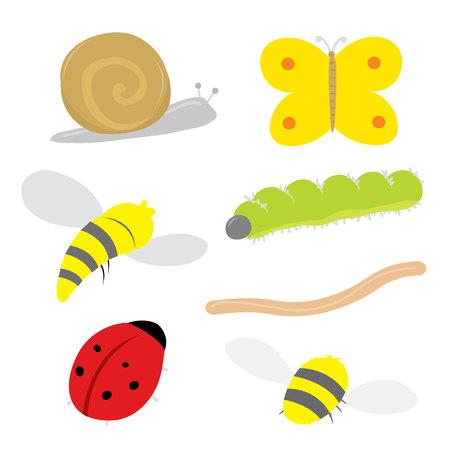 mosca caricatura: Insecto del insecto Mariquita Caracol Oruga de la mariposa del gusano del vector de la avispa de la abeja Vectores